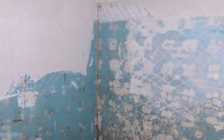 Можно ли класть плитку на крашенные стены?