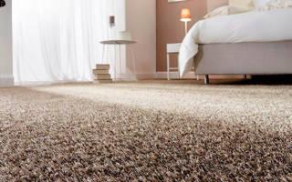 Какое ковровое покрытие лучше для дома?