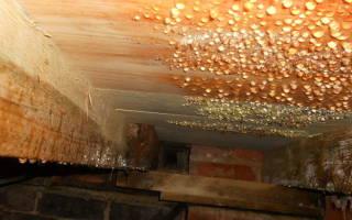 Капает конденсат из вентиляции частного дома