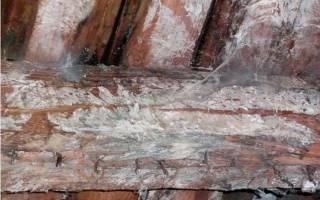 Вентиляция деревянного пола в квартире